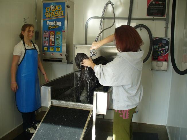 emma getting washed